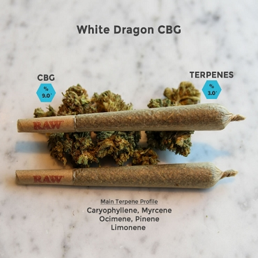 White Dragon - CBG Hemp Flower Buds